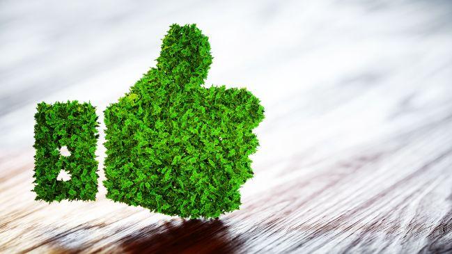 iStock (verweist auf: Nachhaltigkeit und Klimaneutralität)